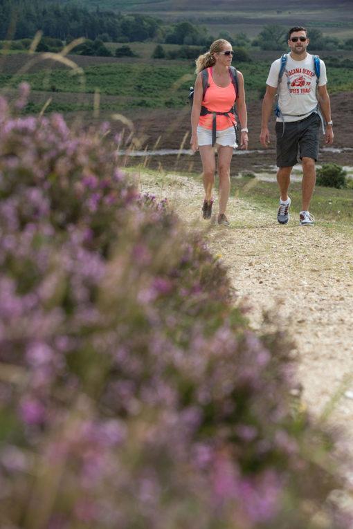 Walkers at Hampton Ridge